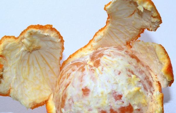 orange-1240217_1280