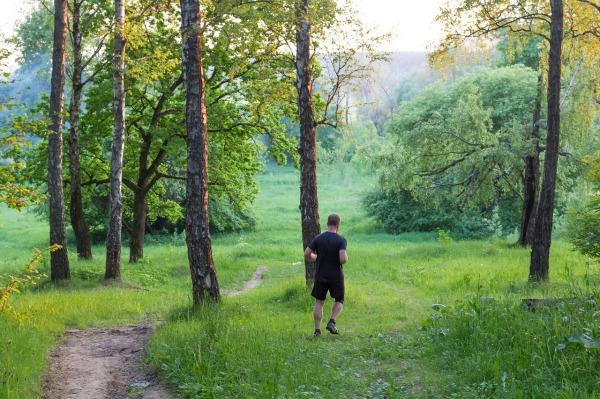 running-1562541_1280