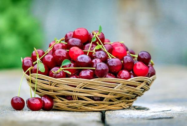 cherry-2554364_1280