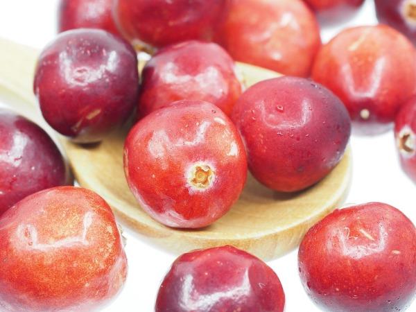 cranberry-1767424_1280